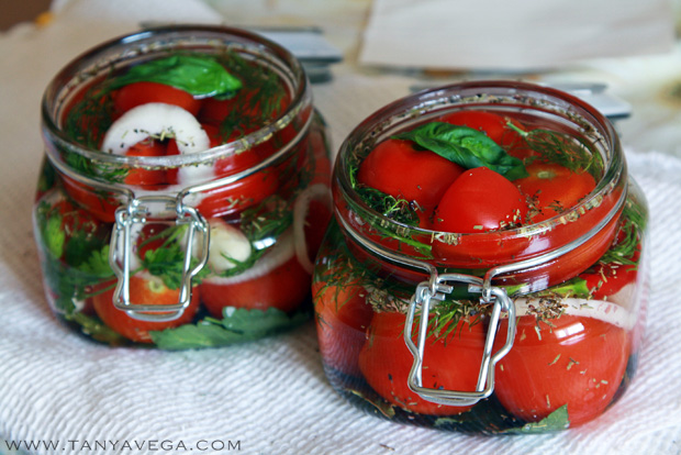 Marinated-pickled-tomatoes-marinovannye-pomidory-Tanya-Vega-7.JPG